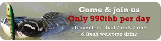 Krabi fishing all day price